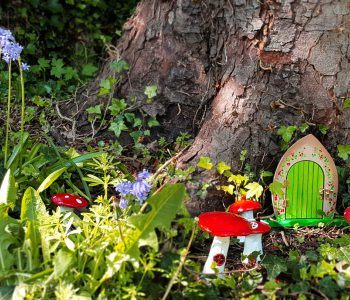 Fairy door and toadstools in the museum garden
